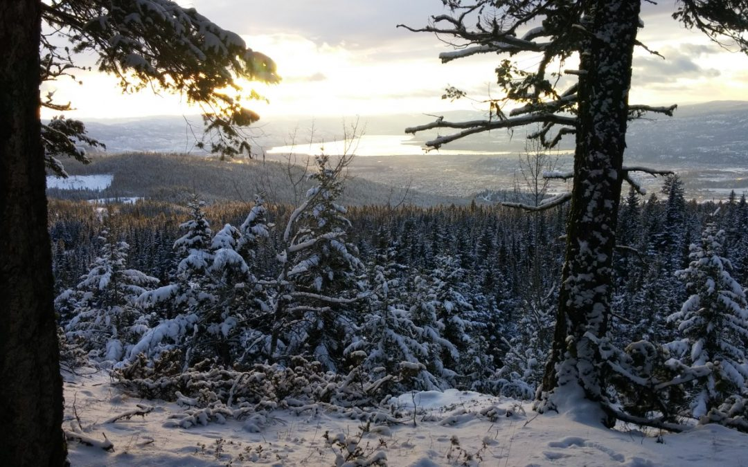 10 Essential items for hiking the High Rim Trail